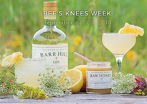 Barr Hill Gin, Bee's Knees week